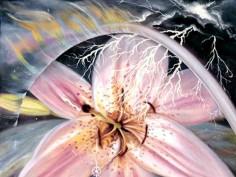 Stargate-Mercy